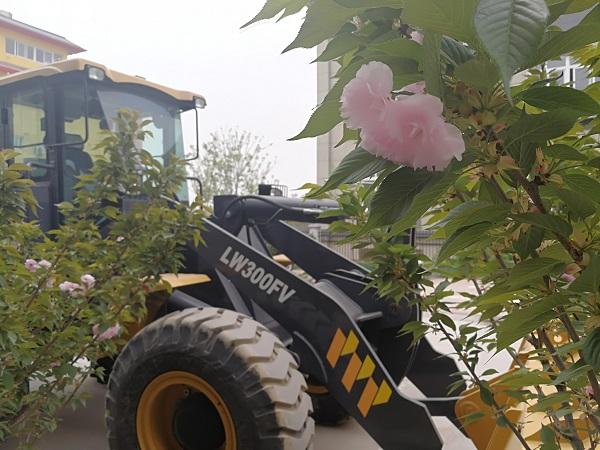 樱花树下的徐工装载机
